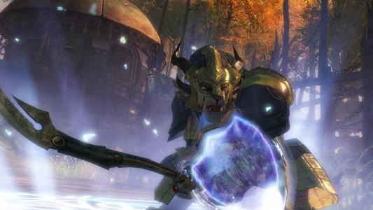 Guild Wars 2 Combattant