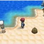 Pokémon Y (03)