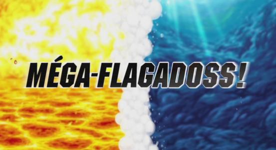 Pokémon Mega Flagadoss