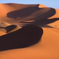 Dossier Vos péripéties vidéoludiques désert