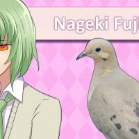 Hatoful Boyfriend Nageki
