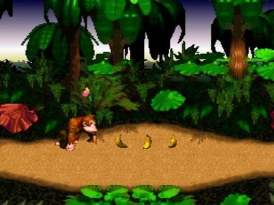 Donkey Kong Country