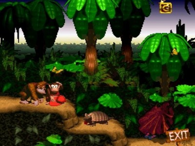 Donkey Kong Country 7