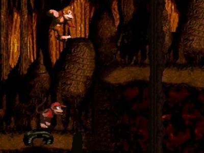 Donkey Kong Country 8