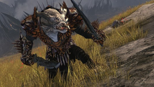 Guild Wars 2 Assassin