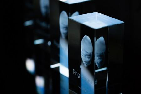 Les Ping Awards 2014