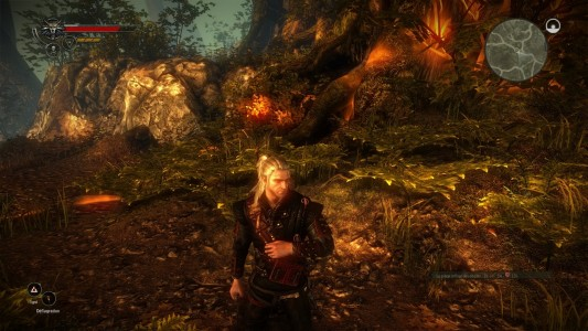 The Witcher 2 Assassin's of Kings forêt