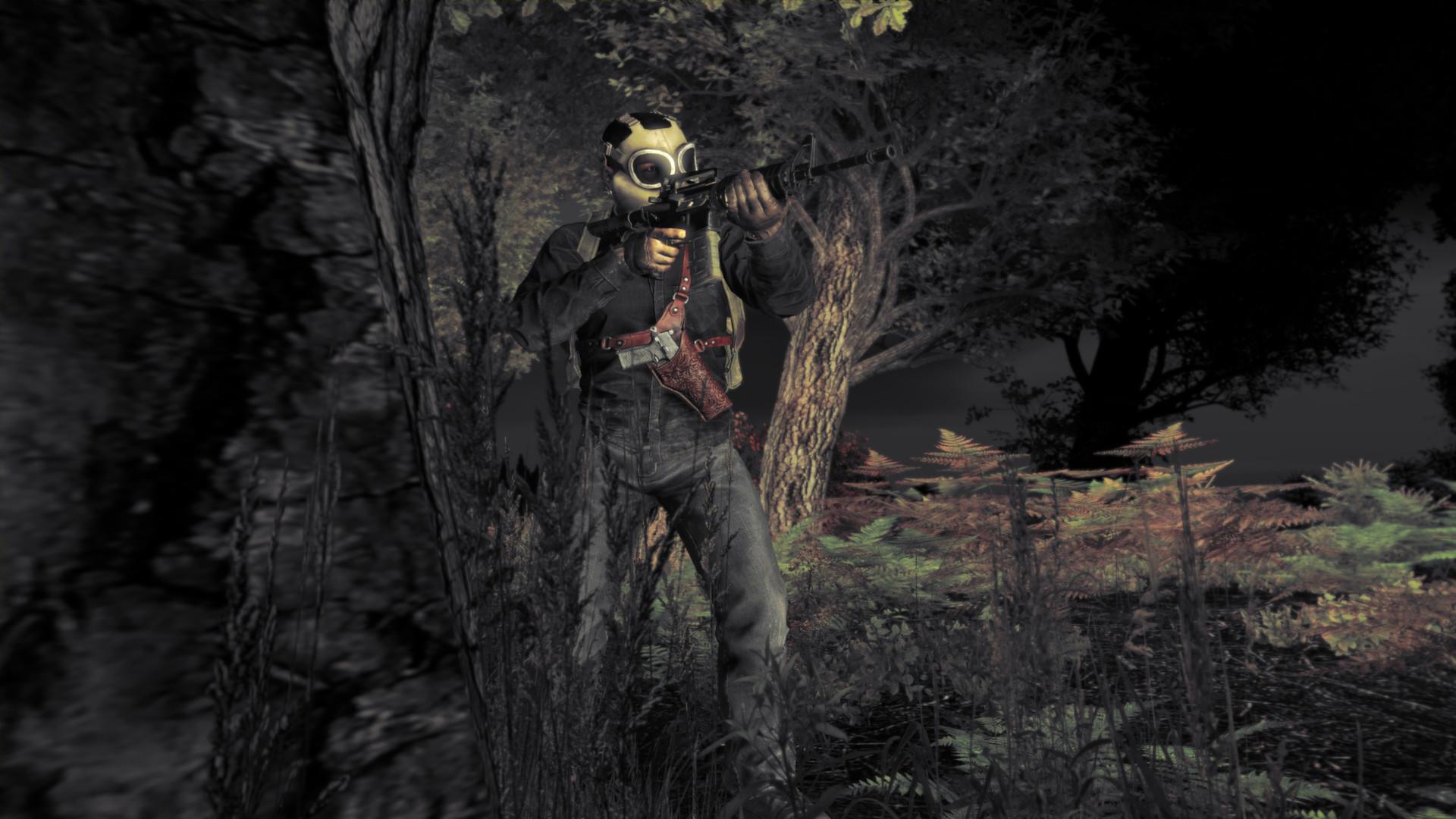 DayZ Survival