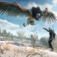 The Witcher 3 Wild Hunt - Griffon