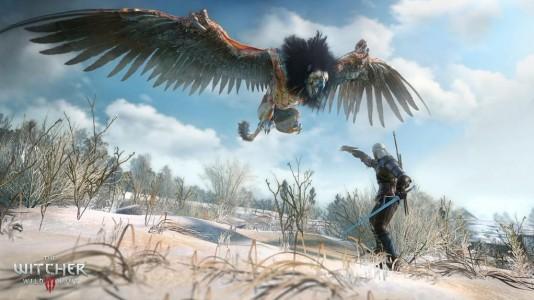 The Witcher 3 Wild Hunt Griffon