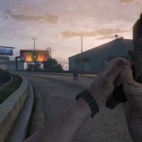 Grand Theft Auto V / fps