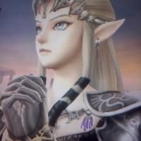 Super Smash Bros LightninGamer / Dark Zelda