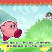 Kirby et la Métamate