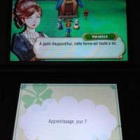Ecrans Story of seasons apprentissage