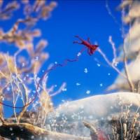 Yarny dans la neige