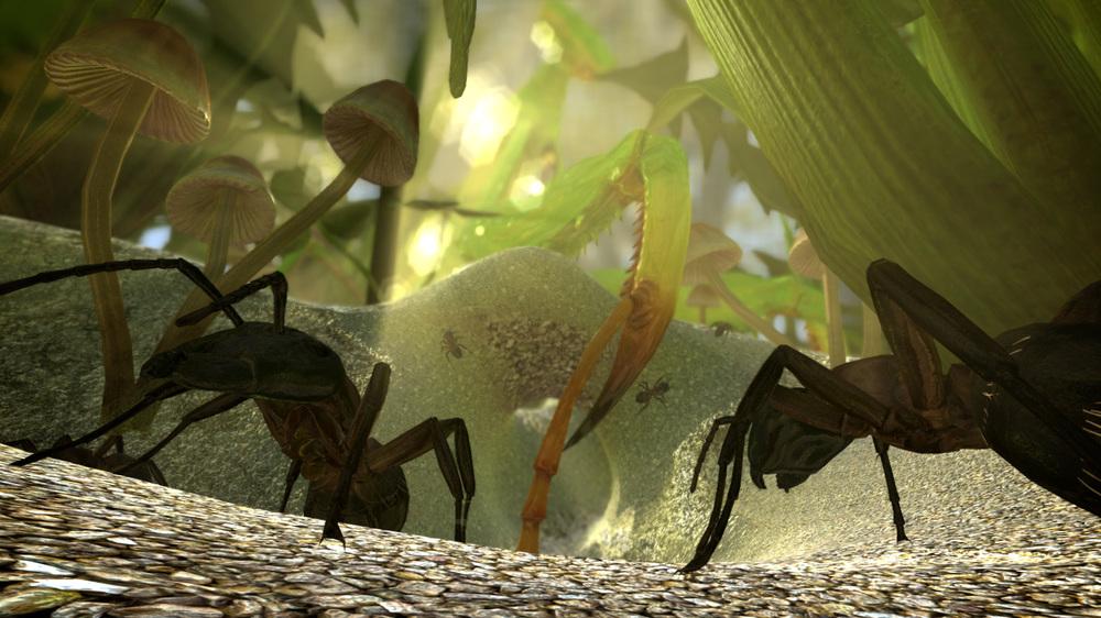 Fourmi Ant Simulator