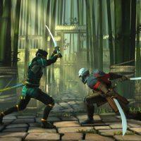 Deux combattants ce font face dans Shadow Fight 3