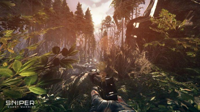 Camouflage en forêt