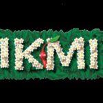 Wii U, preview de Pikmin 3 : Une jolie découverte