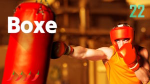 1 2 Switch Boxe