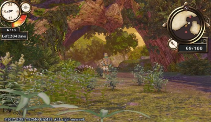 Atelier Firis: The Alchemist and the Mysterious Journey Foret