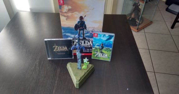 Breath of the Wild collector