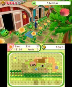 Harvest Moon : Le village de l'Arbre Céleste tournesols