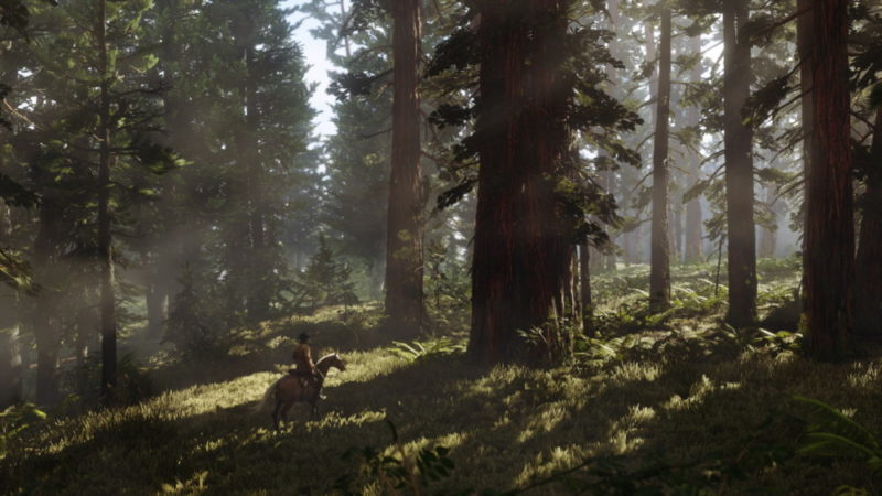 Red Dead Redemption 2 foret