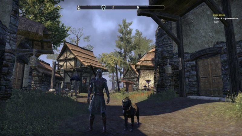 The Elder Scrolls Online: Morrowind Seyda Neen