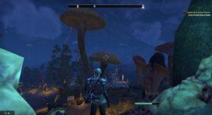 The Elder Scrolls Online: Morrowind marécage