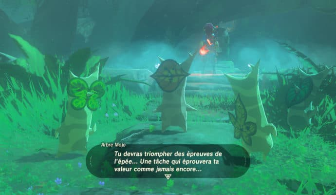 The Legend of Zelda: Breath of the Wild - épreuves légendaires Korogu