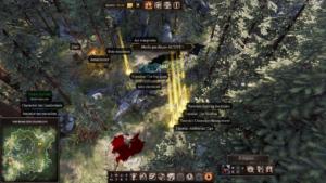 Divinity: Original Sin II - maitre du jeu 3