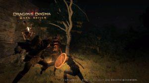 Dragon's Dogma: Dark Arisen cooperation