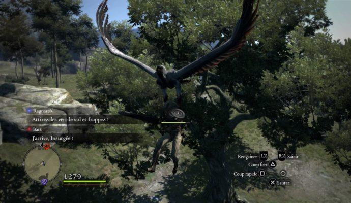 Dragon's Dogma: Dark Arisen combat harpies