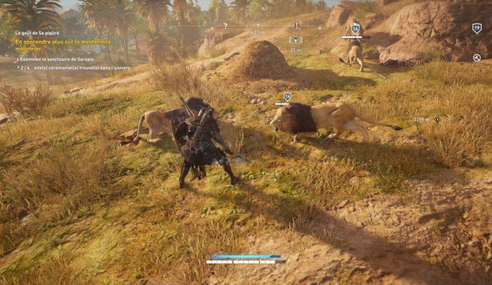 Assassin's Creed Origins - Combat avec lions