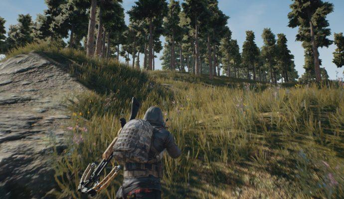 PlayerUnknown's Battlegrounds caché dans la forêt