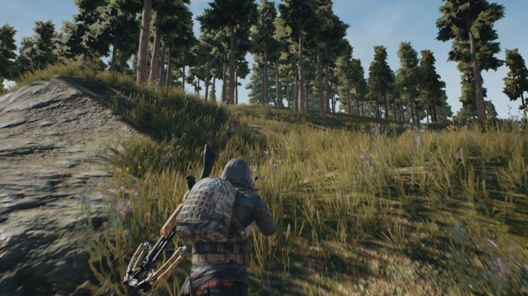 PlayerUnknown's Battlegrounds caché dans la forêt