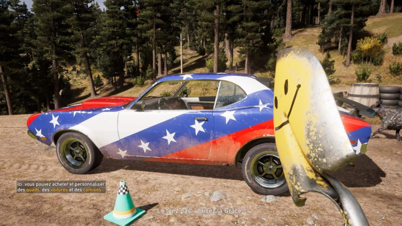 Far Cry 5 objets prestige