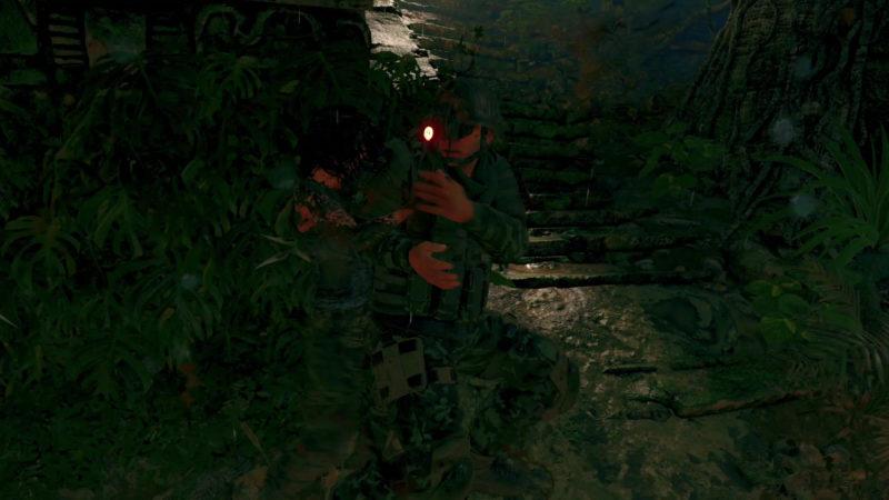 Tomb Raider takedown