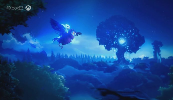Ori and the Will of the Wisps nuit