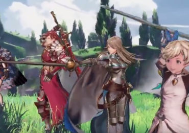 Granblue Fantasy Project RE:Link Héroïne Position de garde