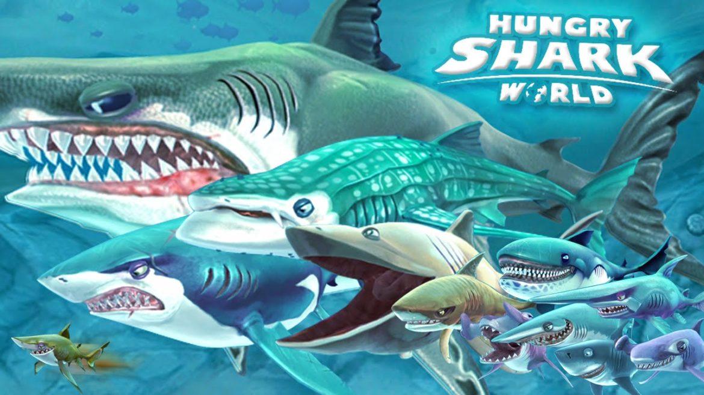 Hungry Shark World gang de requins