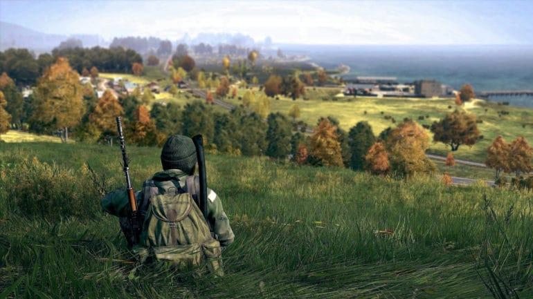 DayZ plaine survivant
