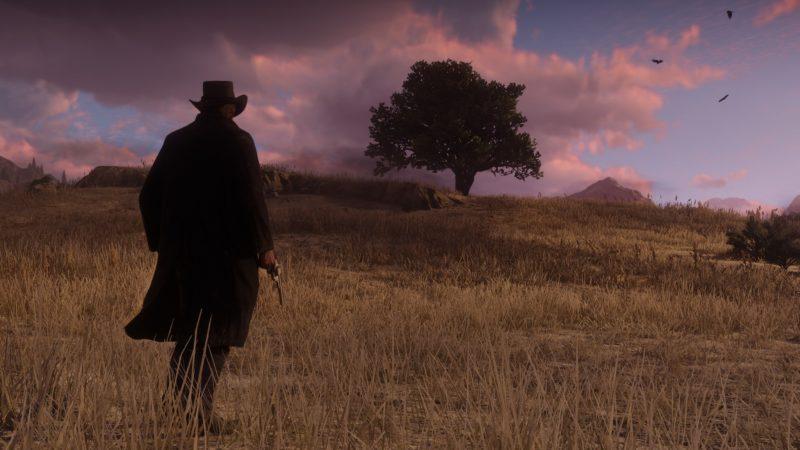 Red Dead Redemption 2 cowboy seul le soir