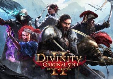 Divinity: Original Sin II Definitive Edition Key Art