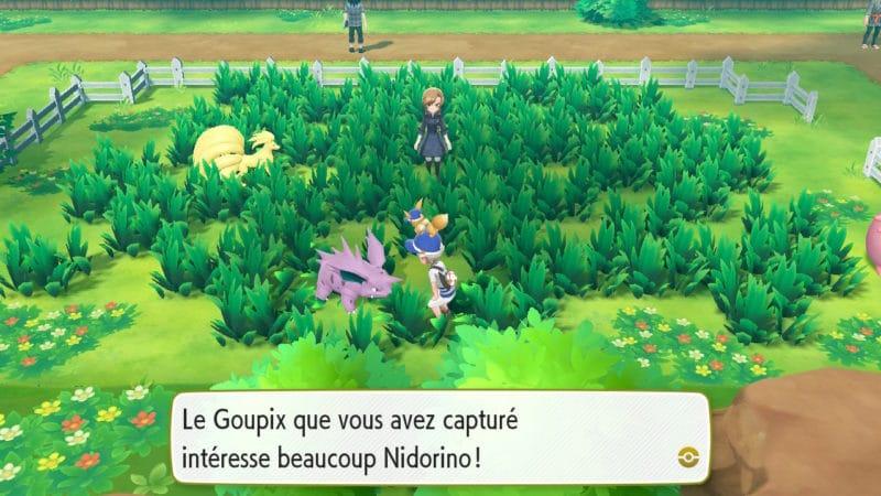 Pokémon Let's Go! - Les créatures se promènent librement