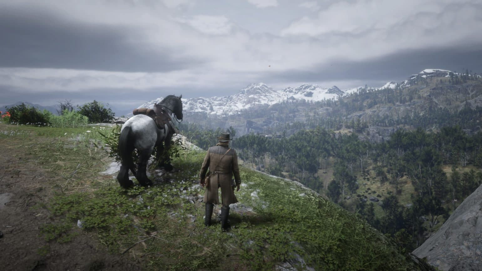 Red Dead Redemption 2 - Panorama montagnes