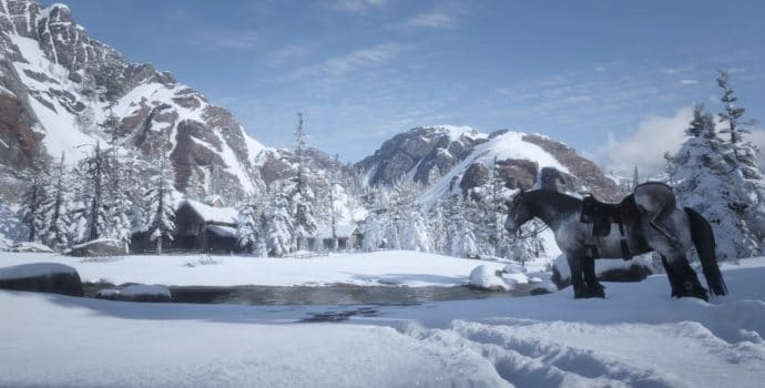 Red Dead Redemption 2 - Panorama enneigé