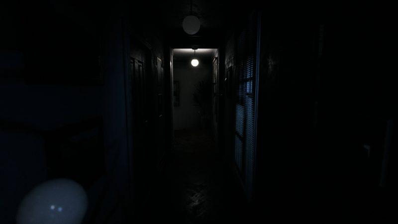 visage preview couloir