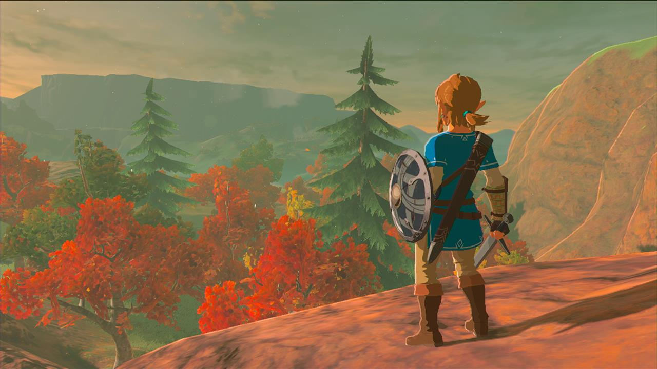 Legend of Zelda - link sur une colline